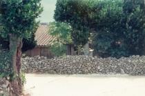村落的风景
