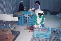 제당 공장