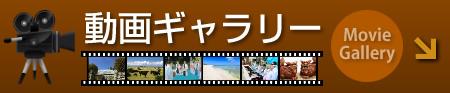 Galería videa